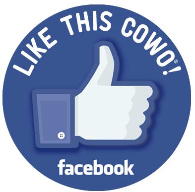 Pagina Facebook Corsica Argonne